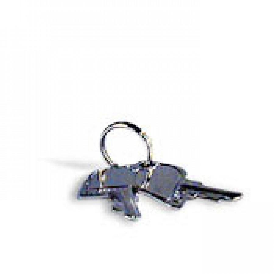 Spare key for DL405 CPU