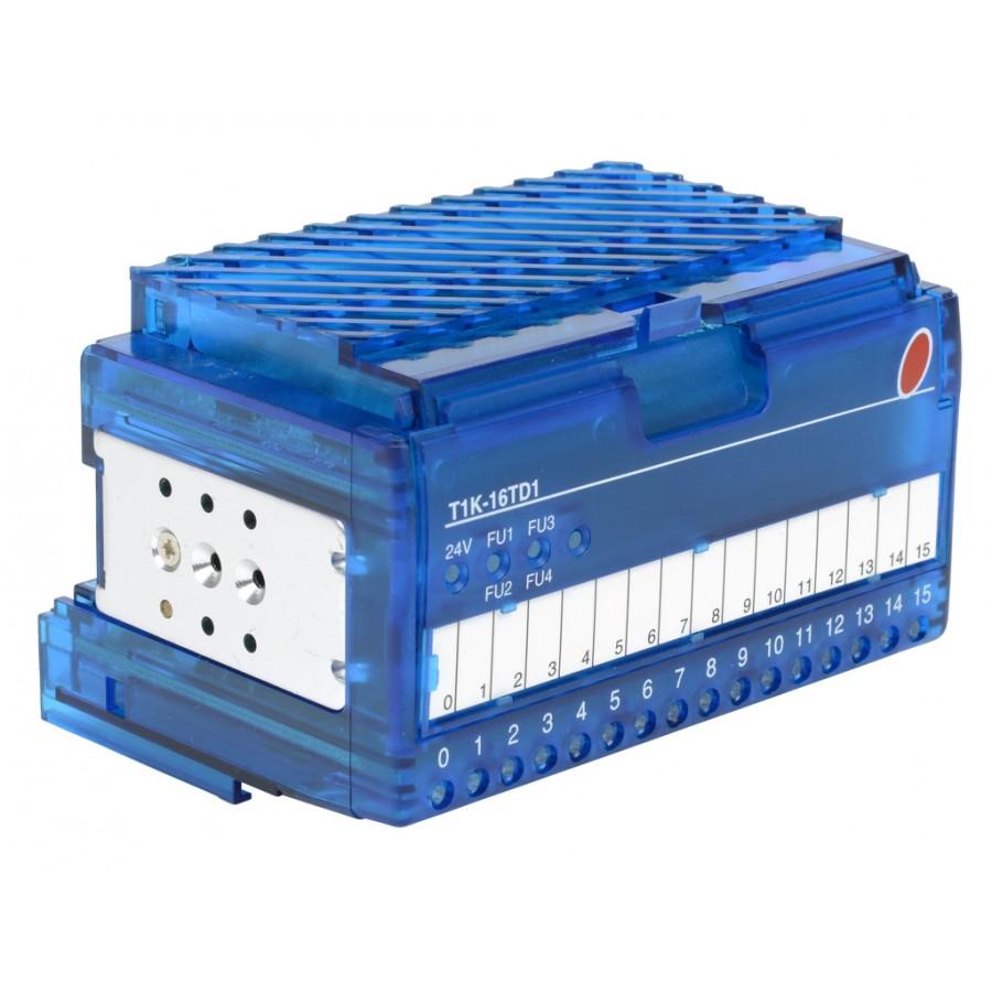 16 Pt 12/24 Vdc Output Module